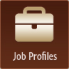 Click here to access online job profile.